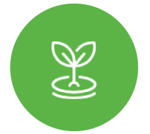 Sprout Icon | Quality Workmanship